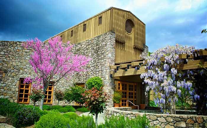 Robert Sinskey Vineyardsの葡萄園
