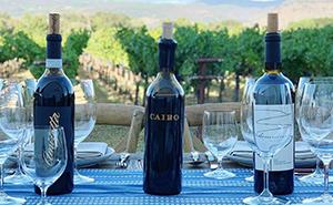 Gamble Family Vineyardsのワイン