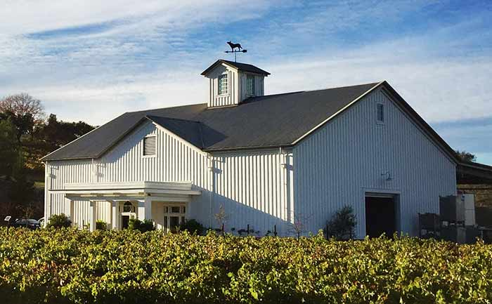 Gamble Family Vineyardsの葡萄畑