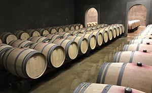 Philip Togni Vineyardのワイン樽