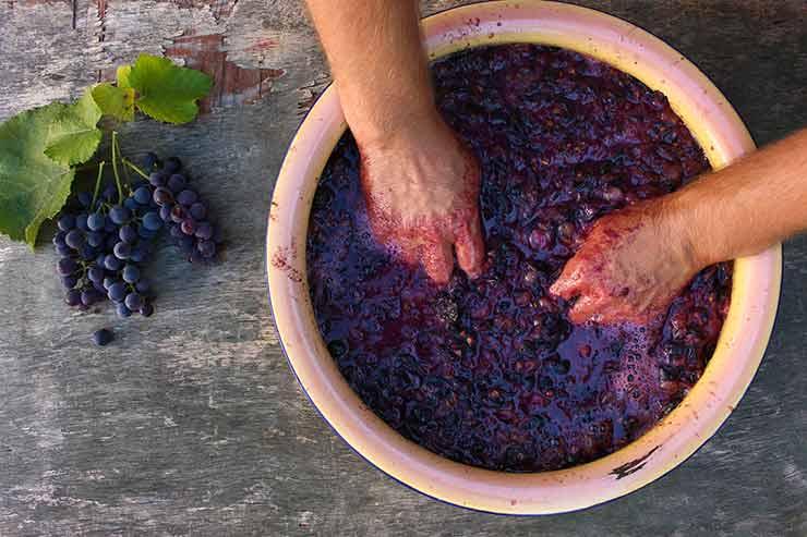 ワインの酸化防止剤